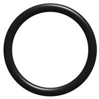 "FLOW-RITE O-Ring for Qwik-Lok Valves, 3/4"""