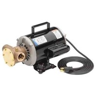 JABSCO FLEXIBLE IMPELLER PUMP, PORTABLE-120V Dock Side Utility Pump